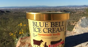 Blue Bell Ice Cream New Mexico