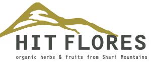 Logo Hit-Flores LLC
